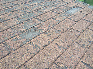 Identifying Hail Damage On Your Roof Schneider Roofing
